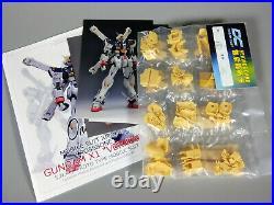 One-K X Dreamcast 1/100 MG Crossbone Gundam X1 Ver Ka Resin Conversion Kit Rare