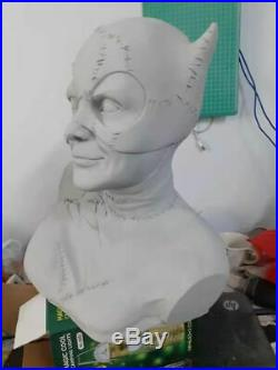Unpainted and unassembled 1/1 catwoman bust, resin model kit, gk